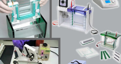 Denaturing Gradient Gel Electrophoresis and Temperature