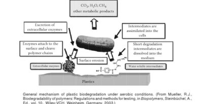 Biodegradation of Xenobiotic Compounds