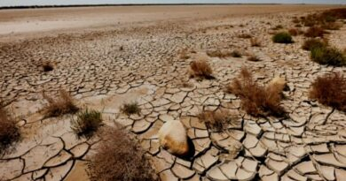 Categories Of Desertification